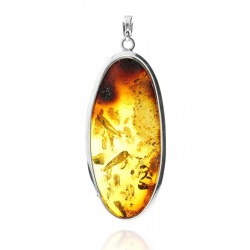 Unique items Pendant with amber - 2
